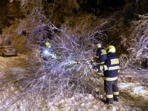 Odstranění padlého stromu - 29.2.2016c
