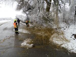 Odstranění padlé větve - 1.3.2016